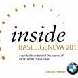 ibg_logo2