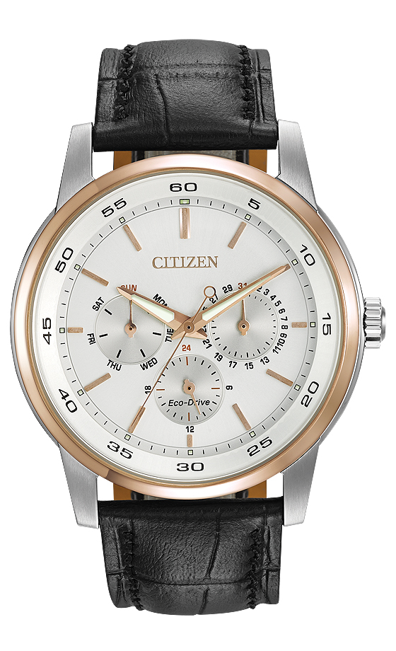 Citizen Eco-Drive Dress