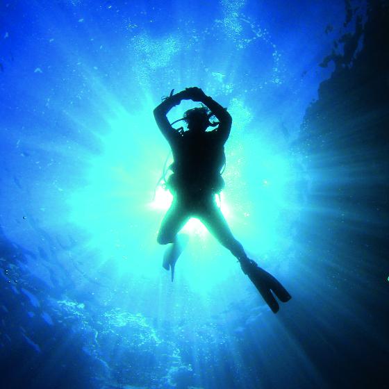 Dive_Opener