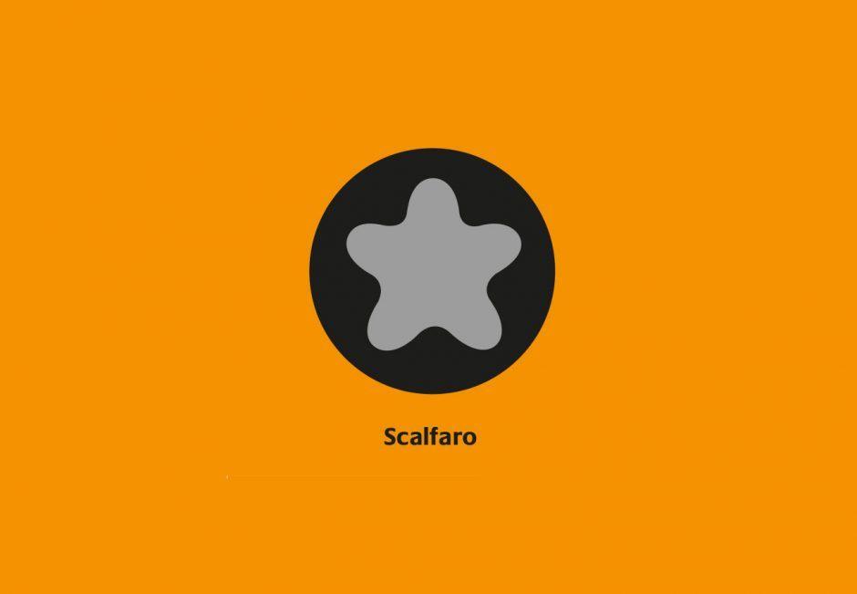 Distinctive Watch Srew Shapes: Scalfaro